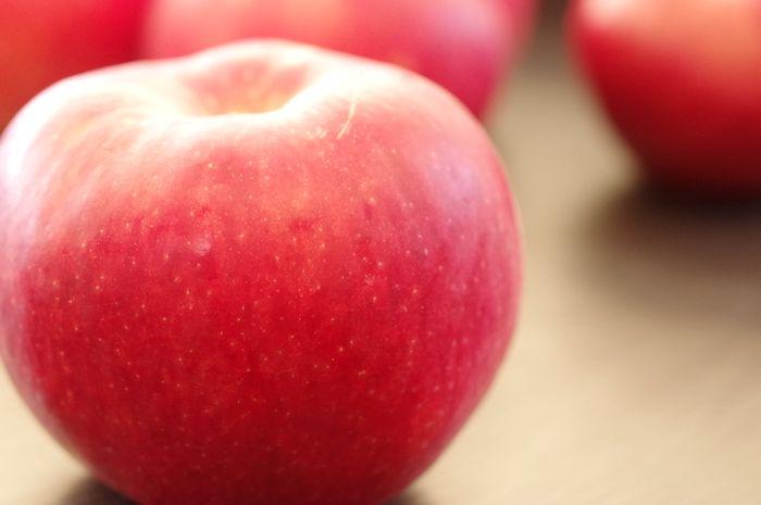 華宝りんご かほう林檎 青森県産 約5kg 約12玉~約16玉