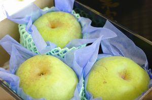 千葉県産の篤農家 香梨(かおりなし)通販 大玉系で独特の香りの青なしを販売取寄。約3kg 約3玉~約5玉