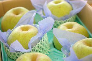 かおり梨 香梨 通信販売 独特の香りのを販売取寄。約3kg 約3玉~約5玉 長野・他産地