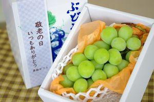 遅れてごめん。9/21以降到着。敬老の日シャインマスカット葡萄ギフト通販 おじいちゃん・おばあちゃんに果物プレゼント。1房