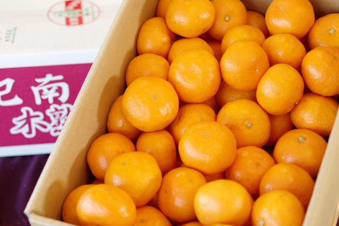 越冬木熟みかん通信販売 JA紀南の紀州一番みかんを販売取寄。約5kg SS~L 和歌山産