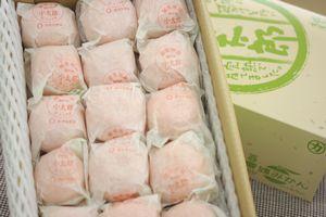 小太郎みかん通販 愛媛県川上共選の味ピカ越冬みかん販売 糖度約13度 約30個