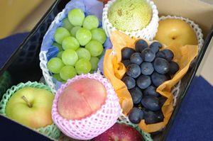 御見舞果物の通信販売。お見舞いフルーツセットを販売全国宅配。中箱タイプ 熨斗・到着指定日対応