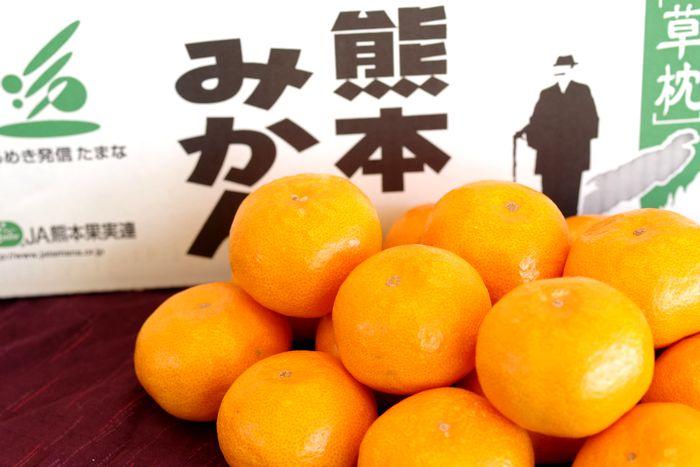 草枕みかん販売 お歳暮熊本みかん通販にJAたまな蜜柑をお取り寄せ 糖度12度以上 5kg S~L