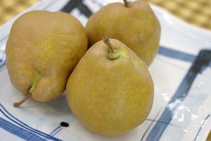 西洋梨メロウリッチ販売 山形県最高糖度の西洋梨 小箱 約7玉~約9玉