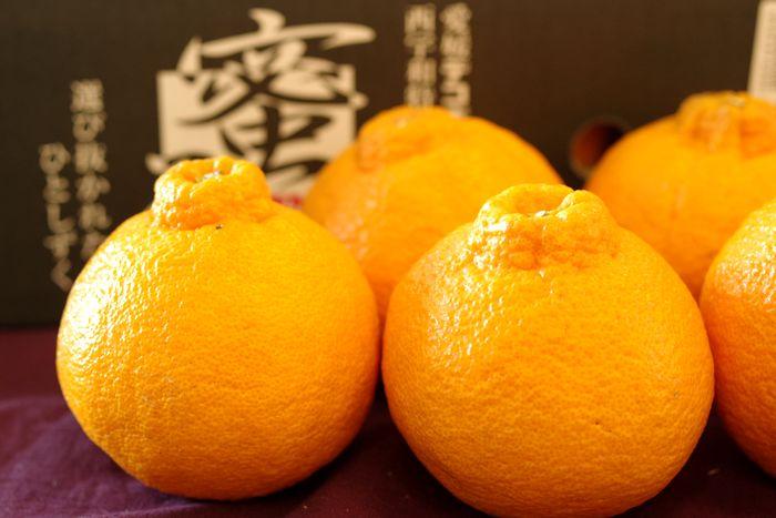 蜜るデコポン通販 糖度約14度の不知火(しらぬい)を販売取寄。小箱 約6玉 愛媛県産