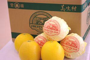 愛媛美生柑(みしょうかん)通信販売 和製グレープと呼ばれる河内晩柑を販売取寄。約7kg 約12〜約22玉 愛媛県産