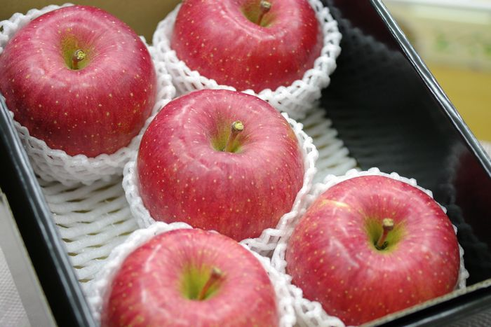 長野ふじりんご通販 信州サンふじお歳暮ギフトに 糖度約14度 小箱 約5玉~約6玉