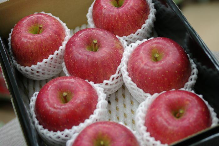 長野ふじりんご通信販売 信州サンふじお歳暮ギフトに 糖度約14度 中箱 約7玉~約9玉