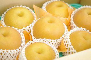 にっこり梨通信販売 栃木オリジナルの大玉系和梨を販売取寄。約5kg 約5玉~約10玉 栃木産