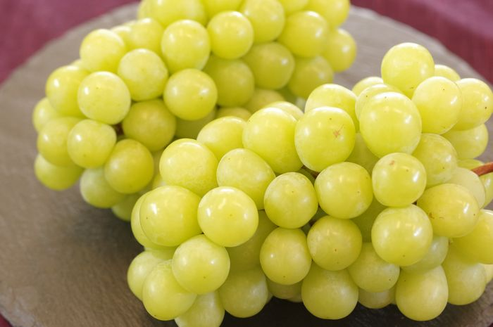 黄華ぶどう おうか葡萄 長野県 1房 550g 皮ごとでほぼ種無し