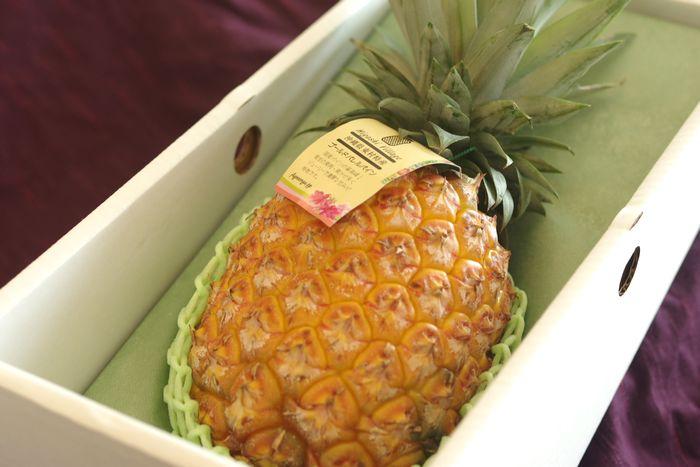 沖縄ゴールドバレルパイン 1本 約1kg 沖縄県産