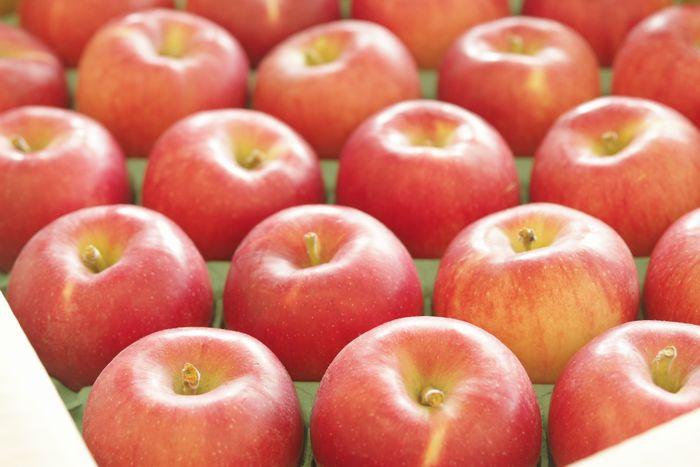 シナノプッチりんご長野県産の小さな林檎。約20玉~約25玉