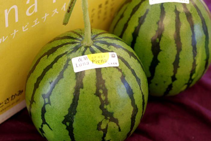 ルナピエナすいか販売 通販で高知県土佐香美Luna Piena西瓜のお取り寄せ 夜須の立体温室栽培 2玉