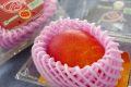 父の日マンゴーギフト通販 宮崎の完熟マンゴーをお父さんにプレゼント。1玉入約400g