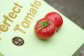 パーフェクトトマト♪糖度8・5度以上!約15玉~約30玉 【愛知県産】