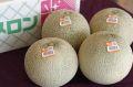 旭村クインシーメロン通信販売 茨城産 糖度の見えるメロンを販売。果物ギフトに 糖度14度 秀品 約5kg 4玉〜6玉