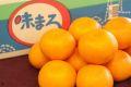 味まるみかん通販 お歳暮長崎西海蜜柑 糖度12度以上 5kg S~L