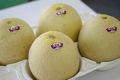 味の香メロン通信販売 茨城産。2つの食べ頃があるメロンを販売。果物ギフトに森興園作 約5k 4玉〜6玉