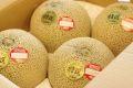 フェスタメロンお取り寄せ販売 熊本産。通販で熊本赤肉メロンを果物ギフトに 約5k 3玉~5玉