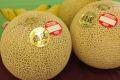 フェスタメロンお取り寄せ販売 熊本産。通販で熊本赤肉メロンを果物ギフトに 2玉入れ