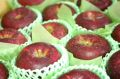 シナノホッペ林檎取寄販売 真っ赤に色づく長野限定りんごを通販で。約5kg 約14玉~約18玉 長野産