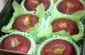 シナノホッペ林檎通販 真っ赤に色づく長野限定りんごを販売取寄。小箱 約5玉~約6玉 長野産