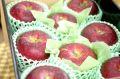 秋映りんご通信販売 真っ赤に色づく長野オリジナルりんごを販売取寄。中箱 約7玉~約9玉 長野・他産地