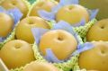 秋月梨(あきづき梨)取寄販売 糖度約13度の和梨を通販で。約5kg 約10玉〜約16玉 千葉・他産地