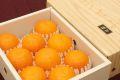 柑橘あすみ販売 高糖度系の新柑橘を通販で取り寄せ。約1.5kg 約5玉~約8玉
