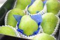 遅れてごめん。9/21以降到着。敬老の日 西洋梨販売 山形県 約7玉~約9玉