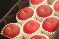 紅ロマンりんご通信販売 JA江刺オリジナの浪漫りんごを販売取寄。中箱 約7玉~約9玉 岩手県産