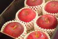 遅れてごめん。9/21以降到着。敬老の日りんご販売 岩手・他産地 約5玉~約6玉