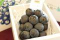 とっておきのナガノパープル葡萄通販 長野県産。大地のしずく JA特選品 1房入