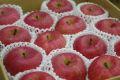 山形ふじりんご取寄販売 朝日町・村山地域お歳暮サンふじを通販で。約5kg 中玉 20玉