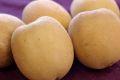 さぬきゴールドキウイフルーツ販売 香川県産を通販取寄せ 国産のゴールドキウイ 糖度13・5度以上 約8玉〜約12玉