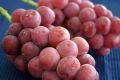 ゴルビー葡萄通信販売 大粒で種が無く高糖度な赤ぶどうを販売取寄。2房 約1100g 山梨・他産地