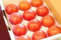 塩トマト太陽の子セレブ販売 糖度8度以上 フルーツとまと 通販で取寄せ。約900g 約8玉~約16玉