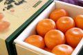 柑橘はまさき通信販売 佐賀オリジナルの麗紅柑を販売取寄。約8玉~約15玉 佐賀県産