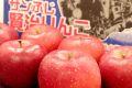 賢治りんご通販 岩手サンふじお歳暮販売 糖度14度以上 JAいわて花巻 5kg 約14玉~約18玉