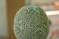 瀬上ファームの肥後グリーンメロン販売 熊本産。通販で取寄!果肉は緑色の熊本メロン 糖度約16度 1玉