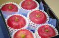 弘前ふじりんご(夢ひかり)通販 青森の糖度約13度のりんごを販売取寄。小箱 約5玉~約6玉 青森県産