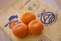 JA三ヶ日みかん誉れ青島本貯蔵販売 熟成みかんを通販で取寄。糖度12度以上 約5kg S~2L 静岡県