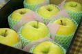 お歳暮星の金貨りんご通信販売 青森まるかじりりんごを販売取寄。中箱 約7玉~約9玉 青森・他産地