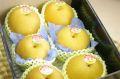 新潟豊水通販  しろね地区糖度約13度の和梨を販売取寄。一糖賞・糖鮮確実 小箱 約5玉~約6玉 新潟産