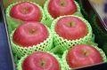 飯綱ふじりんごグルメ16通販 長野県糖度17度お歳暮サンふじりんごを販売取寄。小箱 約5玉~約6玉