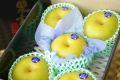 栃木豊水通販  那須野自信作和梨を販売取寄。糖度約13度 小箱 約5玉~6玉 栃木産