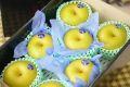 栃木豊水通信販売  那須野自信作和梨を販売取寄。糖度約13度 中箱 約7玉~9玉 栃木産
