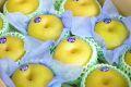 栃木豊水取寄販売  那須野自信作和梨を通販で。糖度約13度 約5kg 約10玉~16玉 栃木産