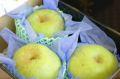 香梨(かおりなし)通販 大玉系で独特の香りの青なしを販売取寄。約3kg 約3玉〜約5玉 千葉県産の篤農家